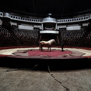 free circus tickets