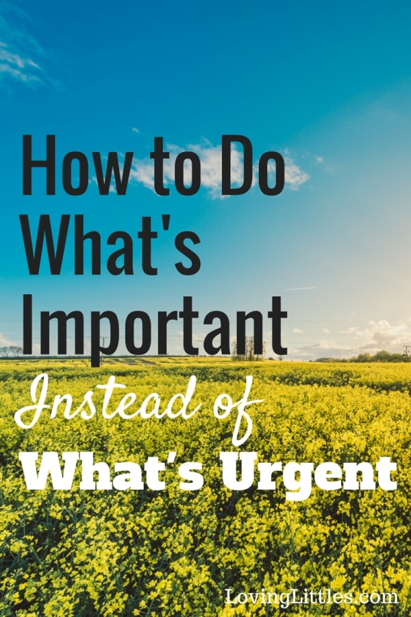 Do you find yourself doing the things that are important instead of what really matters? Procrastinate on Purpose by Rory Vaden helps you to shed the fluff and find focus.