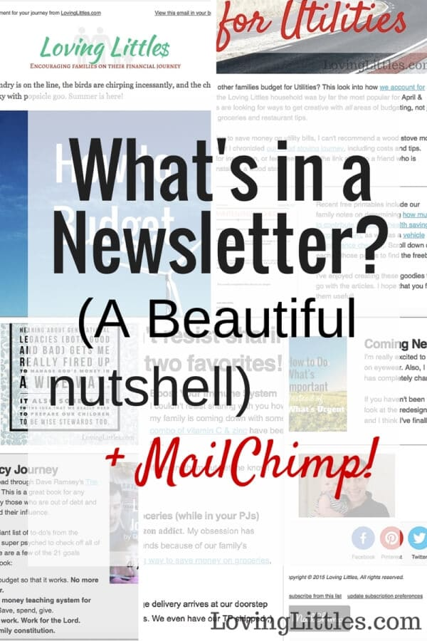 Bloggers, trying to keep in touch with your readers even when they're busy? Try a newsletter! The best way to send up-to-date content without little effort (and keep your community connected!) is to create a monthly newsletter. Here's a sneak peek at my newsletter and why I love MailChimp.