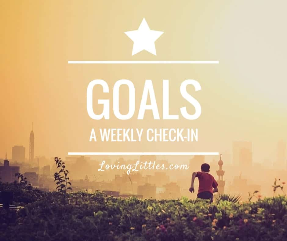 Weekly Goals – July 15, 2015