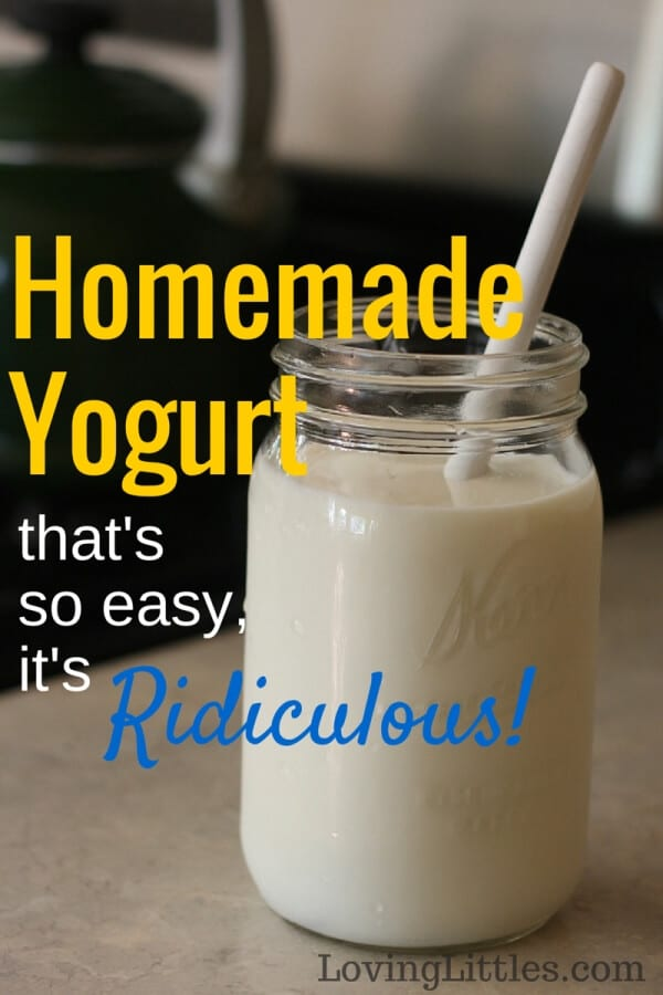 Made homemade yogurt but it was too much of a hassle? Want to learn the easiest way to create probiotic rich yogurt for your family? I'll show you how!