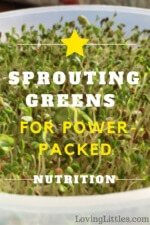 Sprouting Greens for Power-Packed Nutrition