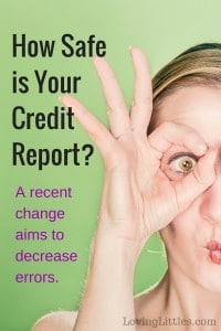 How safe is your credit report?