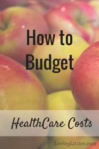 Do you budget for health care or just pull from your savings? Here's how to budget for this cost that can vary from year.